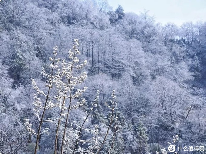 想好假期去哪儿玩了吗?帮大家整理了江浙沪周边的滑雪胜地,让你只花个零头就能承包你的冬季限定玩雪快乐!