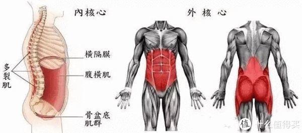 腰痛运动康复—急性期康复