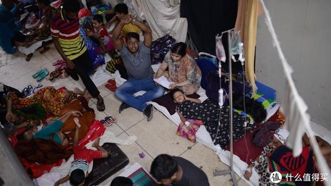 这是自2000年政府开始记录登革热病例以来,在孟加拉国发生的最严重登革热疫情。(图源自网络)
