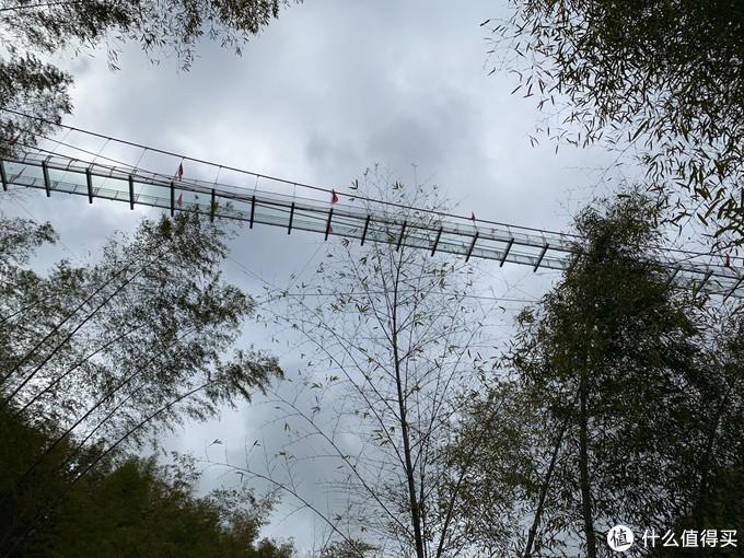 水坑上新建的玻璃桥