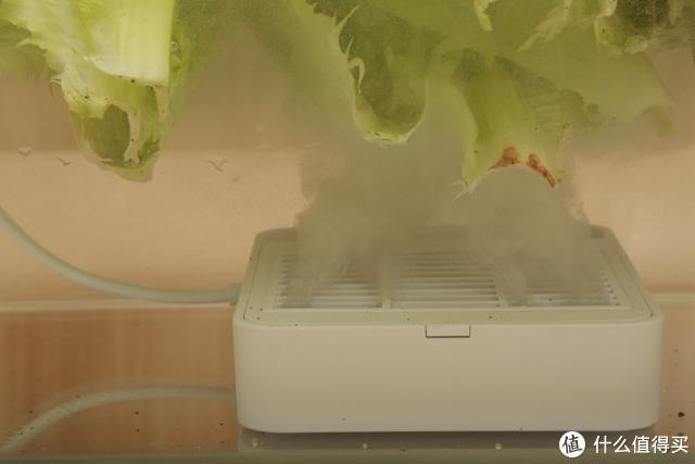 拒绝病从口入,化学分解病毒,小米有品众筹黑科技食材消毒净化机