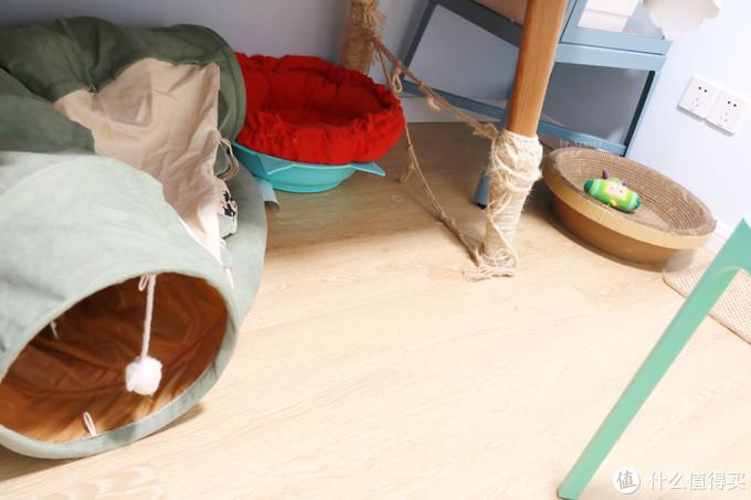 猫的一些设施设备