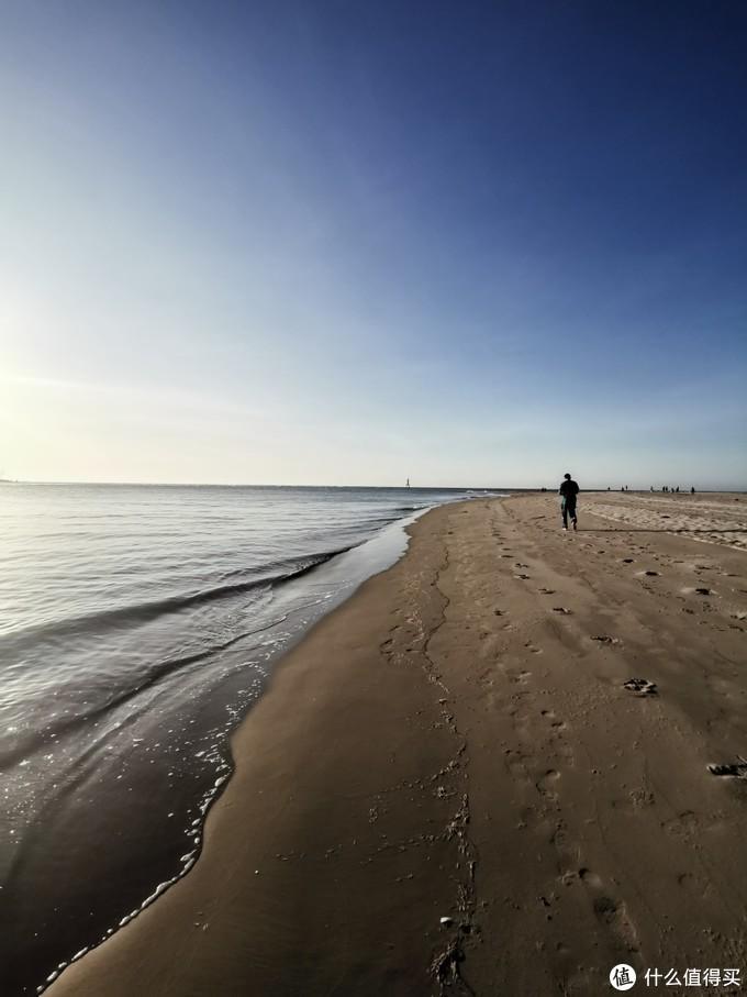 沙滩上都是被冲上岸的死虾