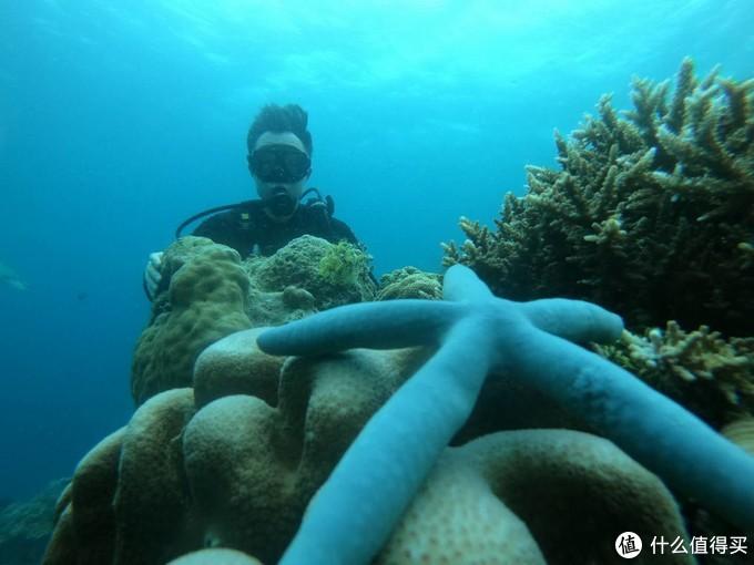 马达京深潜