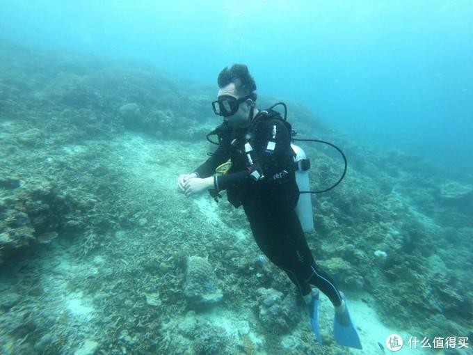 相比汀巴汀巴这里的珊瑚白化严重,水下色彩相对单一