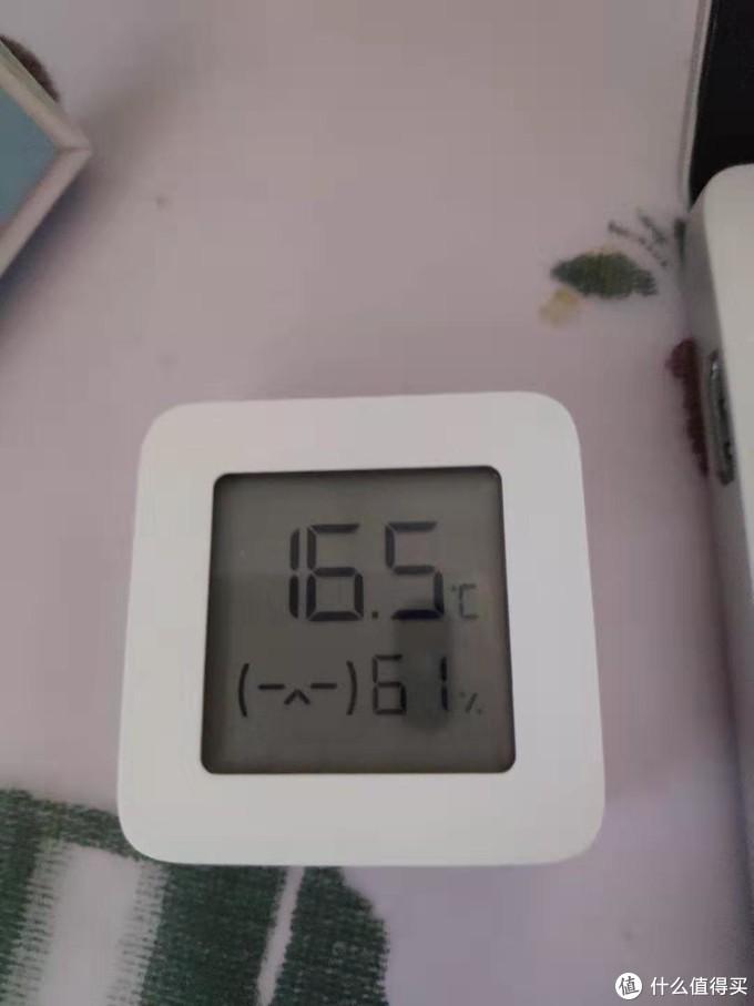 16.5度