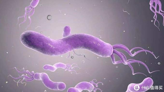 厨房除菌怎么做?可洗、可烘、可存还可消毒的惠而浦8套洗碗机是我见过的最佳答案