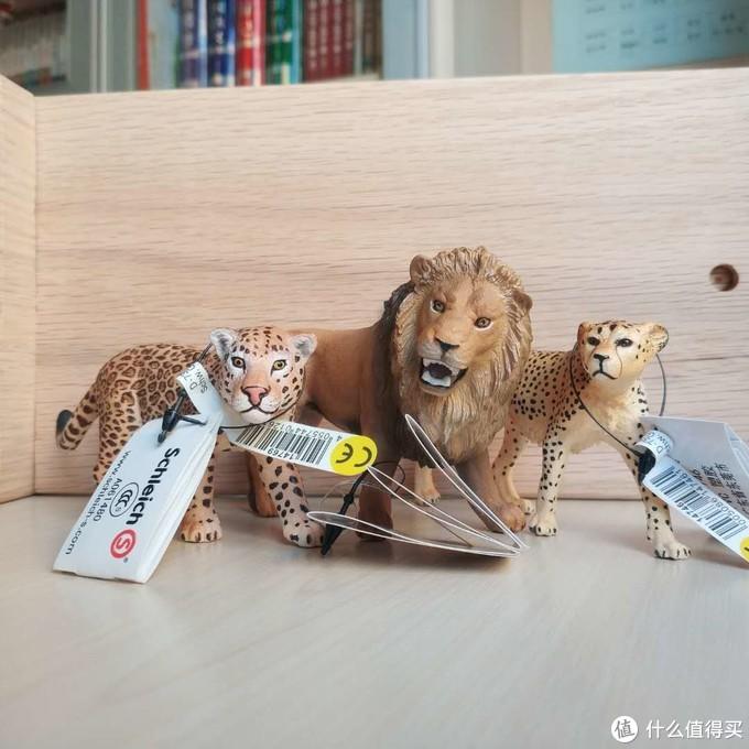 入坑思乐动物模型(一)——狮虎豹简评