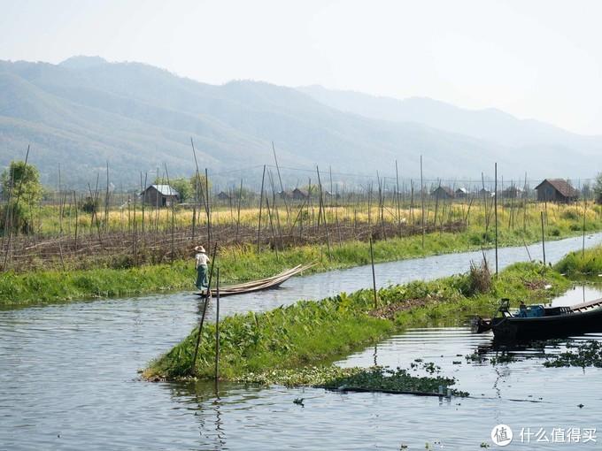 缅甸的威尼斯——茵莱湖,不打突突改打船