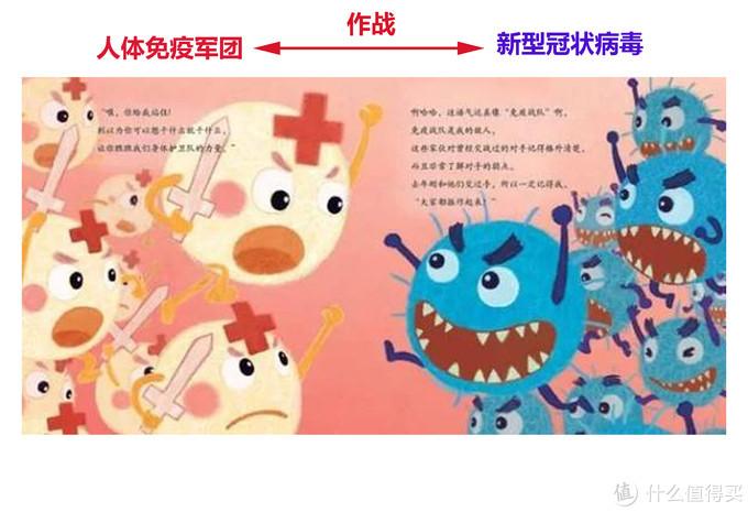 免疫系统是人体对抗病毒的利器
