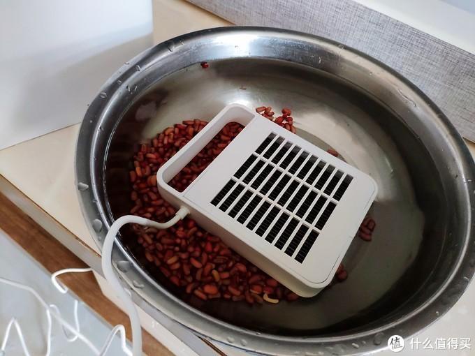 小盾食物净化机DH-002评测:去除农残、保留营养,让食材更干净、更安全
