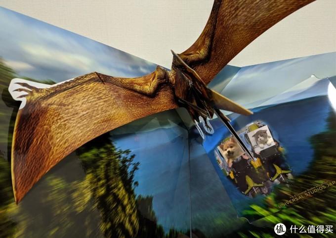 飞天翼龙下来可以买抓拍的照片,就这玩意150RMB