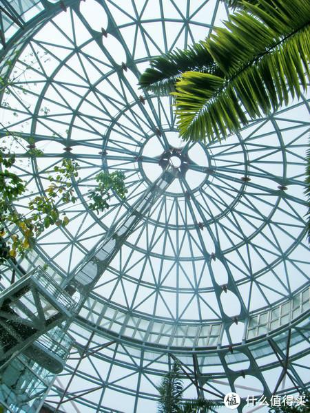 自然科学馆植物馆内-网络图