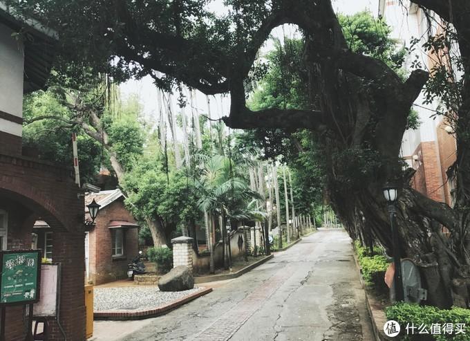 淡江中学大门口看进去就超美