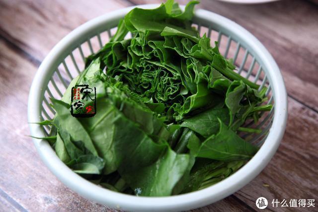 春天这菜特别好,便宜又干净,5毛钱一斤,好吃又减肥,要多吃!