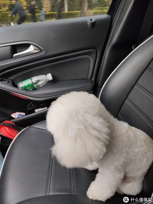 小顽智能宠物饮水机体验:水电分离安全结构 开启科技养宠新方式