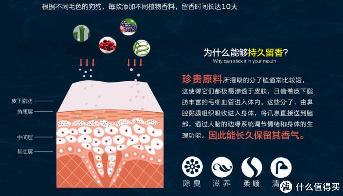 宠物沐浴露测评—雪貂留香貂油系列预防皮肤病
