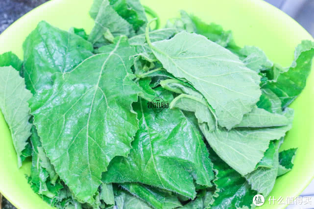 很多人不知道这种叶子能吃,它可是个宝,消炎又杀菌,现在吃正好!
