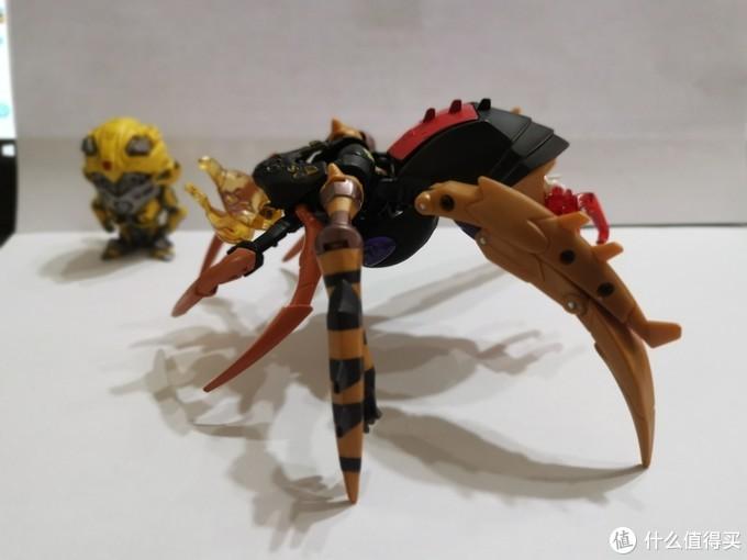 可根据个人喜好调整蜘蛛尾部翘起程度。