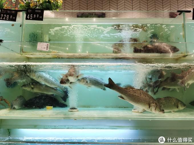 清蒸鲈鱼--记一次山东汉子蒸鱼的过程