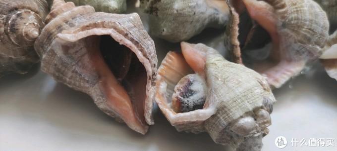 试一试19块钱一斤的红里螺怎么样?做菜就是大男孩的快乐!
