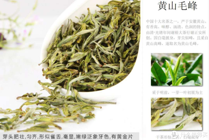 名山出名茶,新茶知时节——聊聊黄山毛峰和口粮新茶徽六寻味800