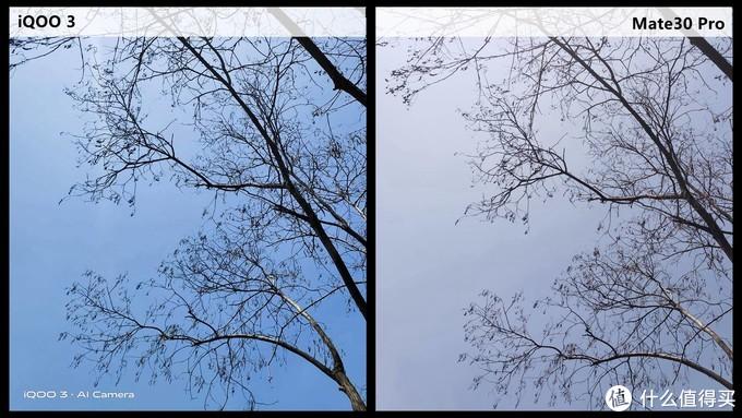 班门弄斧,孰强孰弱?——iQOO 3 Vs Mate30 Pro拍照对比