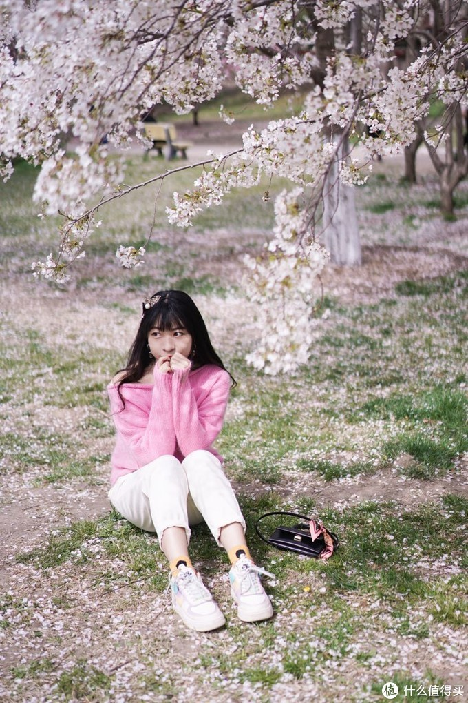 樱花树下🌸我和你,来玉渊潭赏樱吧~