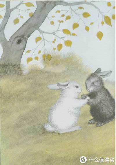读书的启蒙,孩子的绘本选择与陪伴阅读