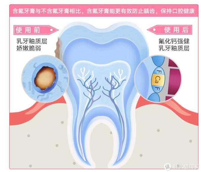 健齿护牙,让boy茁壮成长—天猫国际直营入手防蛀草莓味牙膏(草莓味,德国进口)