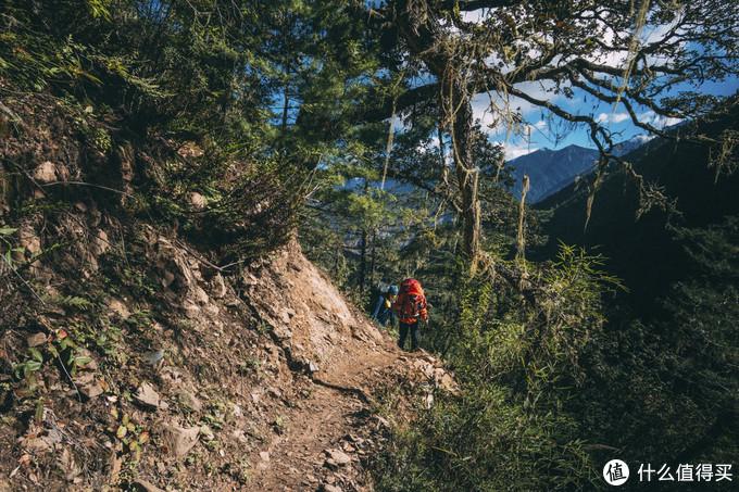 一路缓慢的爬升,在原始森林中前进