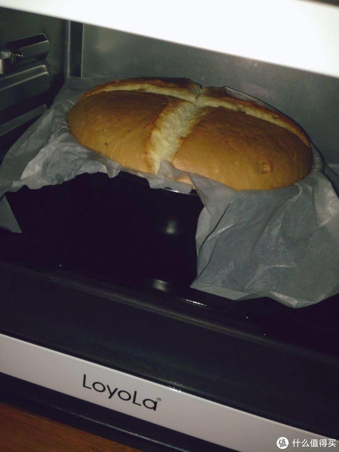 蒸汽烤箱到底要不要入手?我来帮你解答~附烤箱料理大放送!面蛋糕烧烤吃起来!~烤箱等于百宝箱!