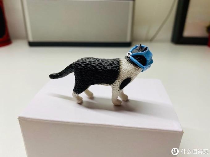 口罩猫开箱测评~武汉加油
