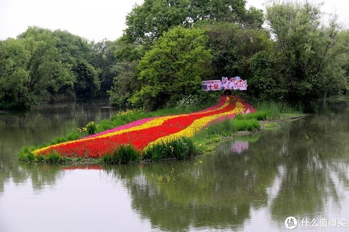 """杭州西溪花朝节,让春天""""玩出花儿"""""""