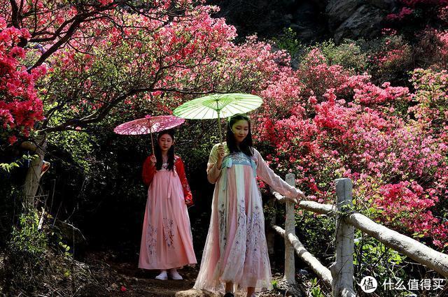 映山红覆盖整座山,汉服美女和花斗,花木兰的家乡
