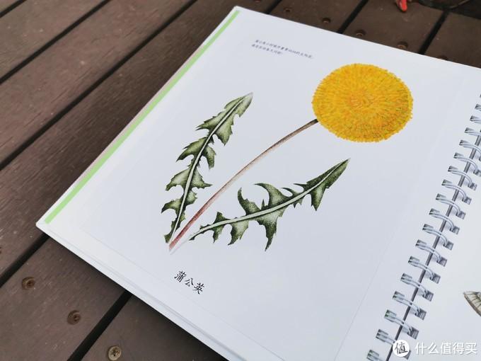 悦读时间(篇七) 精致的画卷开启生命探讨之旅——《生命的四季》