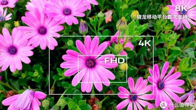 8K视频拍摄:记录美好时光