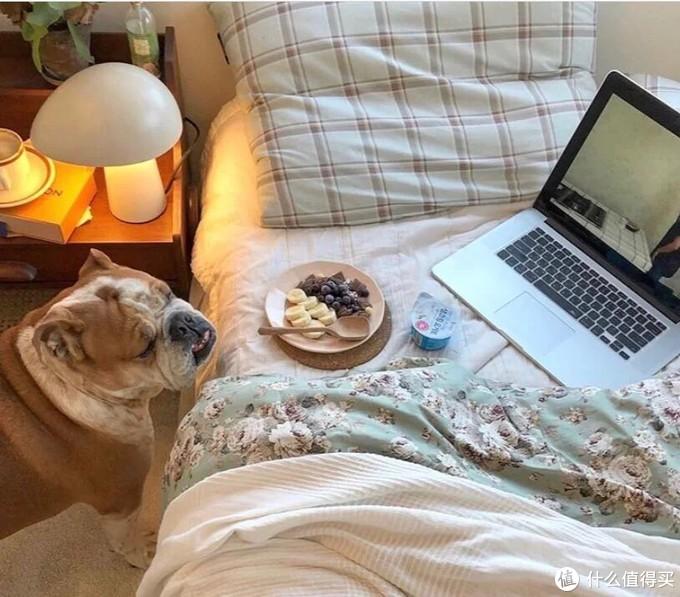 神仙卧室一人居🏠小可爱陪伴的家