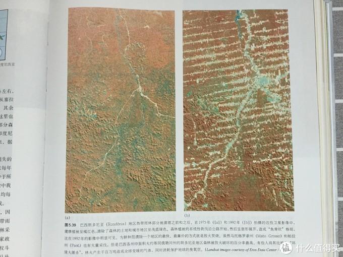 《地理学与生活》插图-巴西1975年和1992年的卫星对比图
