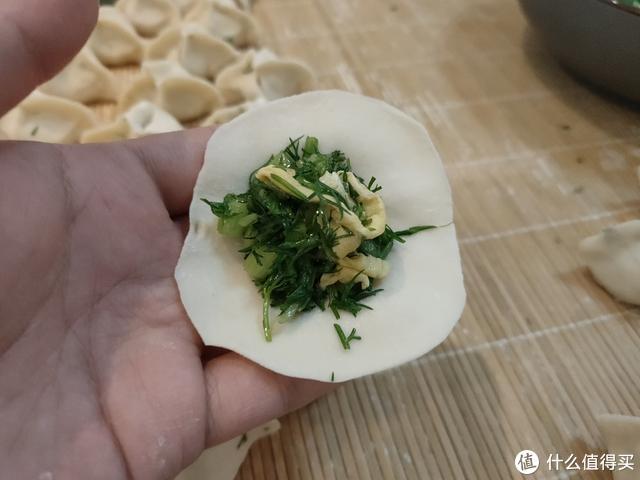 这菜是个宝,用来包饺子最合适,比韭菜、白菜鲜,别错过