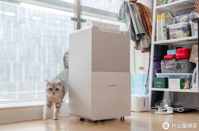 湿度控制你知道多少?浅谈居室环境改善,体验浦力适Boss-plus除湿机