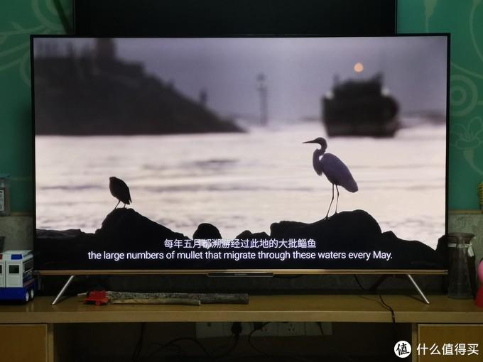 创维云社交智慧屏A20对高清纪录片的解码