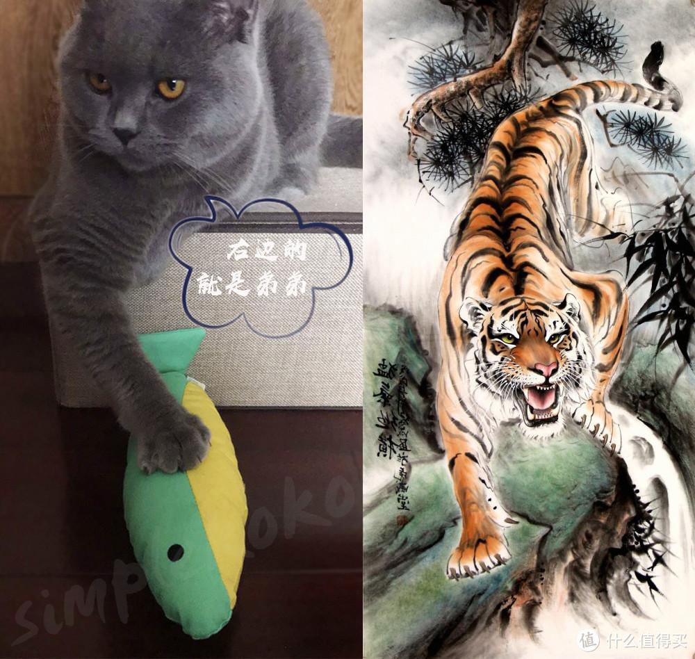 猫用品推荐   玩了3年的玩具,居然仍被Pick?