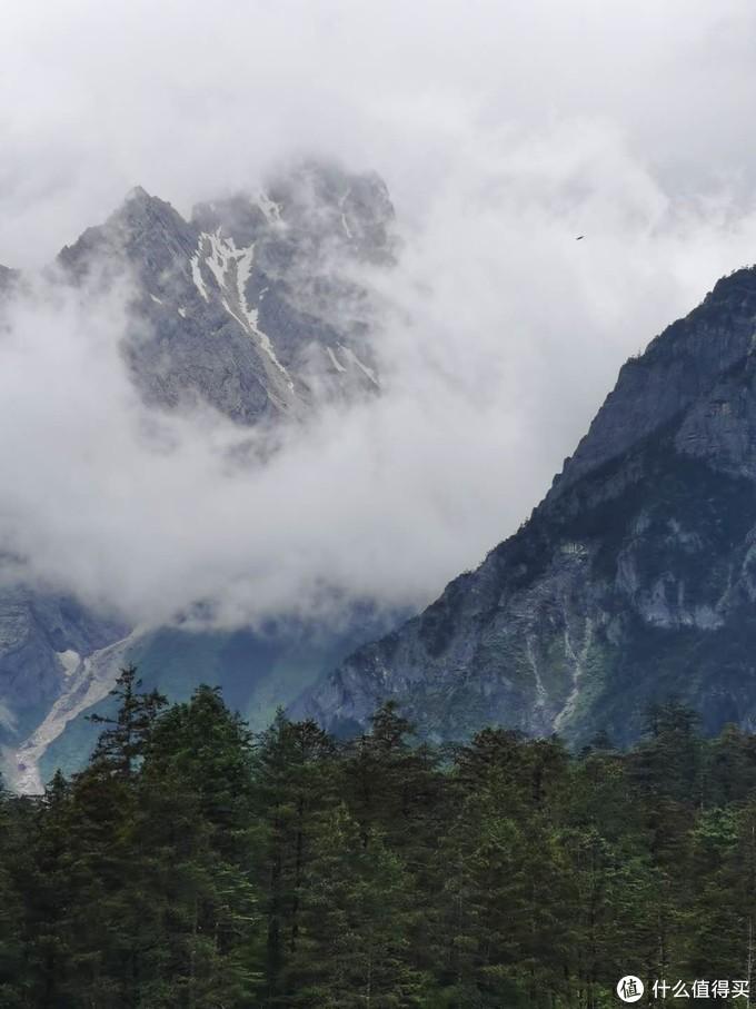 在云杉坪看雪山