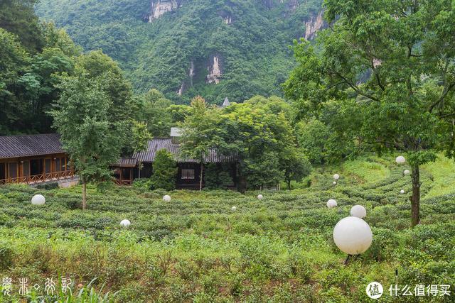 山水间的五寨,洞穴中的餐厅,探秘张家界绝版山水之中的网红酒店