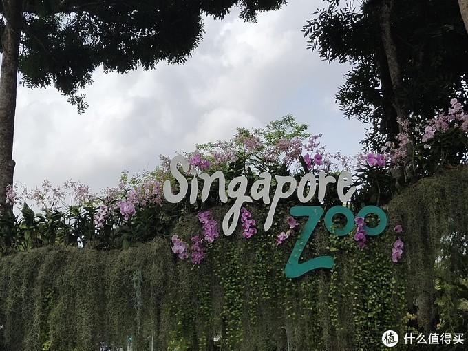 新加坡自由行——第一次来狮城必去的地方(近600+图,文末有无边泳池泳装)
