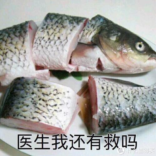 咸鱼失去了梦想