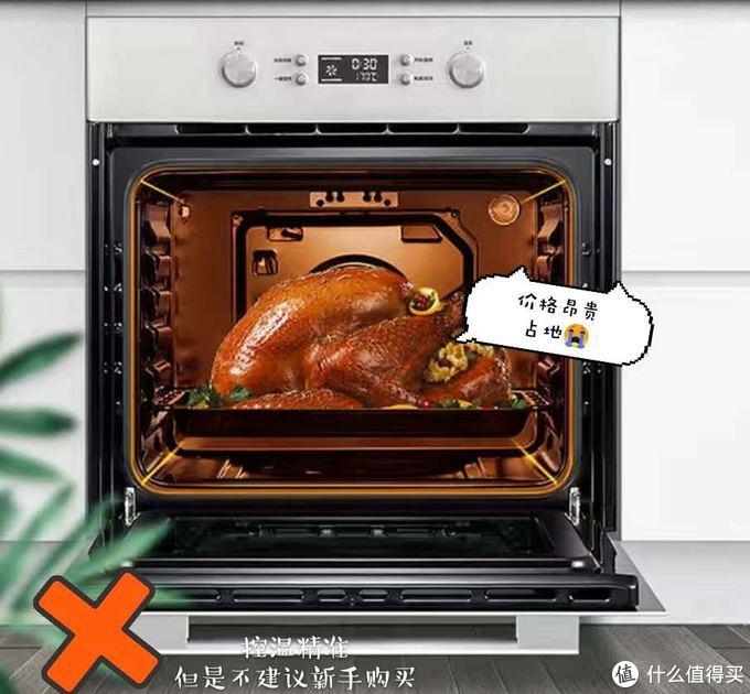 嵌入式烤箱~适合土豪😂