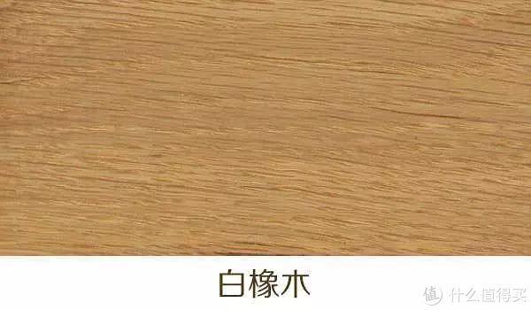 木髓射线较长