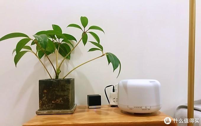 阿里系VS小米系:超20件智能家居设备,我家的智能家居升级之路